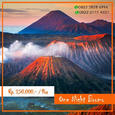 ONE NIGHT BROMO